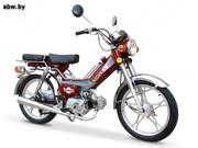 Мопед DELTA YX48Q.  Мотоблоки бензиновые.  Комплектующие.  Мопеды из Китая.